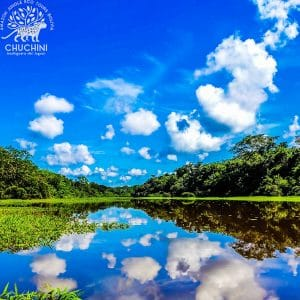 Jungle Tour Madidi Rurrenabaque Pampas Chuchini Eco Reserve Lodge
